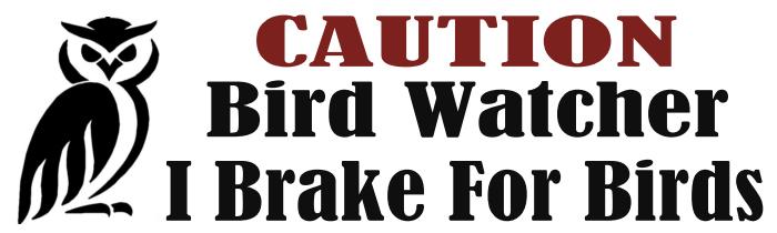 "3"" x 10"" Bumper Sticker - Caution I Brake For Birds"